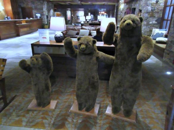Tahoe Bears