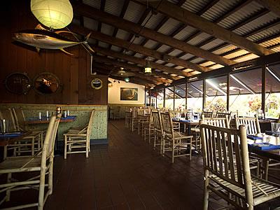 Dolphin restaurant interior